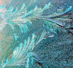 Morning ice on tinted glass..............Brrrrrrrrrrrrrr