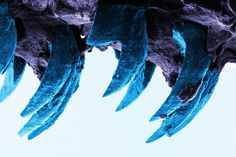 Modest Mollusk May Sport World's Strongest Material * The limpet's hardy teeth could inspire new vehicular designs, experts say. * Limpet teeth, seen through a scanning electron microscope, are stronger than even spider silk.