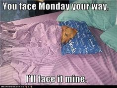 #You Face Monday Your Way.  # I'll Face It Mine