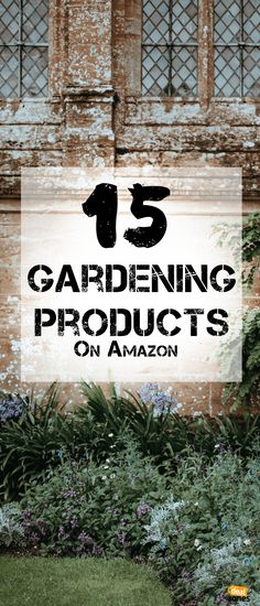 Keep Your Lawn Looking Fresh with These 15 Gardening Products On Amazon Amazon Home Decor, Gardening Gloves, Cool Tools, Lawn, How To Look Better, Fresh, Plants, Products, Plant