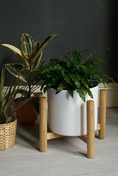 English Ash Plant Stand