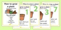 A set of lovely prompts for you to use to teach your children how to plant and grow seeds!