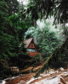 ***Cabin by the Franklin Falls trail (Washington) by Valeriy Poltorak (@mrvalography) at @thecabinchronicles