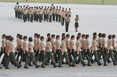 Graduation Day for The Fewer, The Proudest female marines! Female Marines, Us Marines, Women Marines, Female Soldier, Military Humor, Military Love, Military Photos, Marine Corps Humor, Us Marine Corps