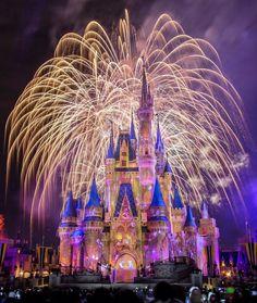 Walt Disney World Pictures Disneyland, Walt Disney World, Disney World Magic Kingdom, Disney Parks, Disney World Fotos, Disney World Castle, Disney World Pictures, Disney World Florida, Disney Magic, Disney Pixar