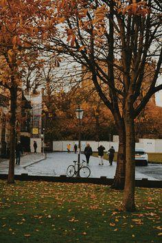 Autumn Scenes, Durham, Sidewalk, Landscape, Photography, Scenery, Photograph, Side Walkway, Fotografie