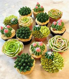 Garden Cupcakes, Succulent Cupcakes, Flower Cupcakes, Mini Cupcakes, Cupcake Flower Bouquets, Cake Decorating Techniques, Cake Decorating Tips, Cookie Decorating, Pretty Cakes