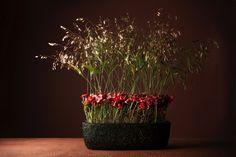Design: Bobüii Flower Design & Styling