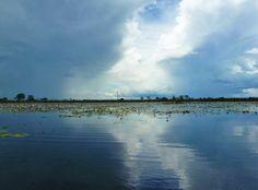 The Okavango Delta: a nature's maze - Mokum Surf Club Okavango Delta, True Nature, Maze, Thunder, Worlds Largest, Nostalgia, Surfing, Africa, Sky