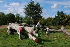 Fairlop Waters Natural Playground, FoRM Associates, Redbridge, London, 2010 Brightly painted cuts on the felled wood are an interesting visual addition to the typical natural playground 'stumpscape'.