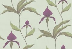 Orchid (66-4027) - Cole & Son Wallpapers - Make an impact with this stunning violet orchid design, pale green leaves and a soft duck egg background – perfect for feature walls. Available in other colours – please ask for a sample for a true colour match.