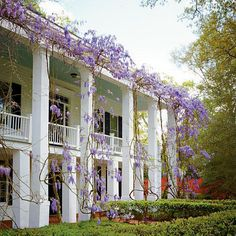 Southern Plantation… Sweet tea on a long portico, enjoying the summer breeze full, smell of wisteria and a rocking chair. Southern Living, Southern Porches, Southern Charm, Southern Style, Country Porches, Southern Baby, Southern Women, Southern Gothic, Southern Plantation Homes