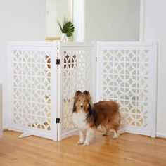 Looking for Palm Springs Designer Gate Primetime Petz ? Check out our picks for the Palm Springs Designer Gate Primetime Petz from the popular stores - all in one. Palm Springs, Pet Gate, Dog Gates, Gate Hinges, Small Doors, Swinging Doors, Dog Care Tips, 5 D, Solid Wood