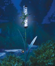 Look what I found on #zulily! Color-Changing Solar Hummingbird Stake #zulilyfinds