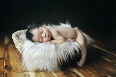 Newborns in Dreamland by Tracy Raver