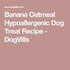 Banana Oatmeal Hypoallergenic Dog Treat Recipe - DogVills