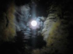On a night like this, you look to the sky. Long have you waited, for the moon shine's voice to speak words only you can hear...What has the moonshine told you? - Writing Prompt.