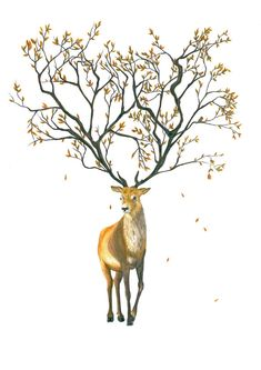 Stag with Tree Antlers Print by TracyStattArt on Etsy