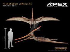 Pteranodon longiceps by Herschel-Hoffmeyer