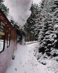 A magical train ride in Germany 😱😍 🎥: evolumina - beautiful Nature and Travel Videos Nature Sauvage, Winter Scenery, Destination Voyage, Beautiful Places To Travel, Ways To Travel, Train Rides, Train Trip, Train Travel, Travel Abroad