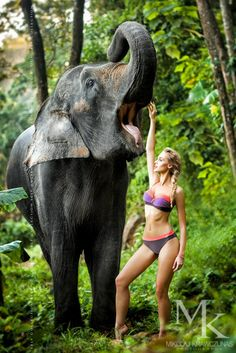 Fot Mikolaj Krawczunas Self collection 2014 Pink # swimwear # swimsuits # girl # sexy # summer # jungle # elephant # fashion #
