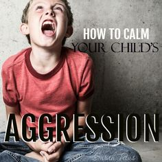 Do you have a toddler who is experiencing the terrible twos…or threes? …an older child whose behavior is getting to be unmanageable? Not sure where to start at bringing peace back into your home? Here are sometips on how to calmyour child's aggression.