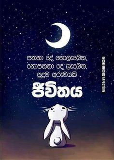 73 best Sinhala quotes images on Pinterest | Poem, Poems ...