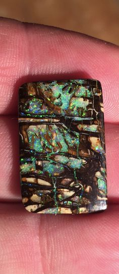 A wonderful piece of Opalized Wood...Bill Kasso
