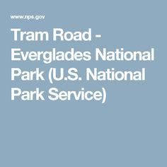 Tram Road - Everglades National Park (U.S. National Park Service)