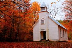 15 Stunning Fall Photos from the Blue Ridge Mountains