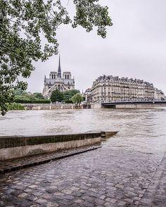 Avec cette crue ils règne une atmosphère étrange à Paris. D'une côté tous les bateaux sont à quai et ils n'y a plus aucune vie sur le fleuve. Seuls la police et les pompiers ont le droit de naviguer. D'un autre, conscients de vivre un moment historique, les parisiens sont dehors. Il y a très longtemps que je n'avais pas sentie une atmosphère aussi sympathique le long de la Seine. ---  With this flooding, there's a strange atmosphere here in Paris. In one hand life is on stand by on t...