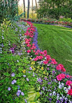 Beautiful Lawn Border | Flickr - Photo Sharing!