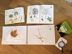 activités de botanique arbre Plantation, Container, Explorer, Montessori, School Posters, Trees And Shrubs, Zoology, Botany, Preschool
