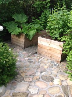 Two tall planters with stone walkway. Eco Garden, Herb Garden Design, Fruit Garden, Dream Garden, Vegetable Garden, Outdoor Plants, Outdoor Gardens, Tall Planters, Garden Spaces