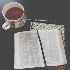 nehemiah study: she reads truth | Urban Wife Diaries