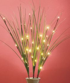 GRASS 3 LED LIGHTED BRANCHES HALL LIGHT ACCENT KITCHEN TABLE MANTEL HOME DECOR #Unbranded