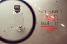 How I Learned to Enjoy Nature Study