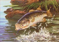 splash dance large mouth bass