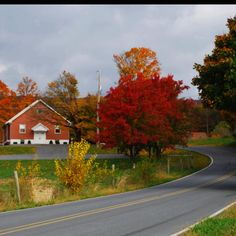 Fall color, Northern Berks County PA