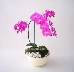 Resultado de imagen para arreglos orquidea