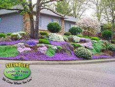 Steep Hillside Landscaping, Full Sun Landscaping, Landscaping With Rocks, Outdoor Landscaping, Front Yard Landscaping, Landscaping Ideas, Sloped Front Yard, Sloped Backyard, Sloped Garden