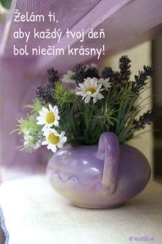 Birthday Wishes, Happy Birthday, Plants, Blog, Decor, Funny, Google, Quotes, Information Technology