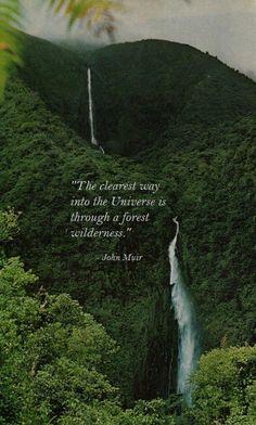 John Muir.  A bright spot in a very droll history of  environmental awareness.