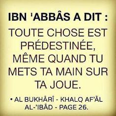 Hadith, Le Noble Coran, Saint Coran, Islamic Quotes, Ramadan, Quran, Muslim, Allah, Religion