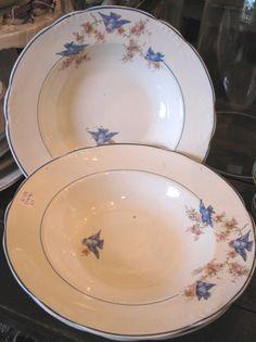 Bluebird dishes!