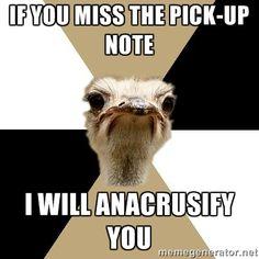 Music Major Ostrich via Meme Generator
