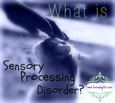 Sensory Processing Disorder #1 - what it is www.lovinadoptin.com #adoption #fostercare