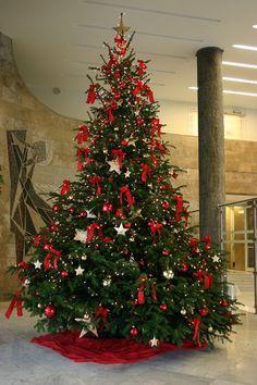 Tannenbaum Klassiker - christmas tree classic