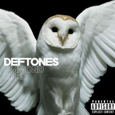 "I got the #lyrics for ""Risk"" by @deftones on @musixmatch mxmt.ch/t/30854894"
