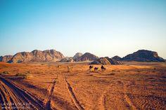 Wadi Rum | La Vida Loca 2.0 Matkablogi | www.sarrrri.com